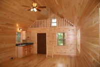 adirondack log cabin