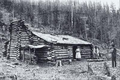 log cabin history changed american history