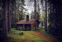 log cabin history in the woods